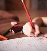 Fomentar la educación de un niño – El más inteligente de su curso